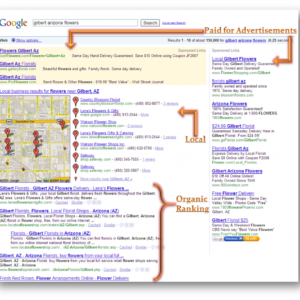 Dominating the Google SERPs
